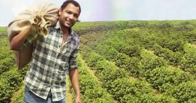 Bio káva chrání životní prostředí i lidské zdraví